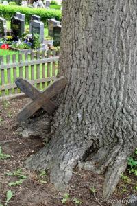Eingewachsenes Holzkreuz